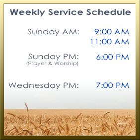 Weekly Service Schedule